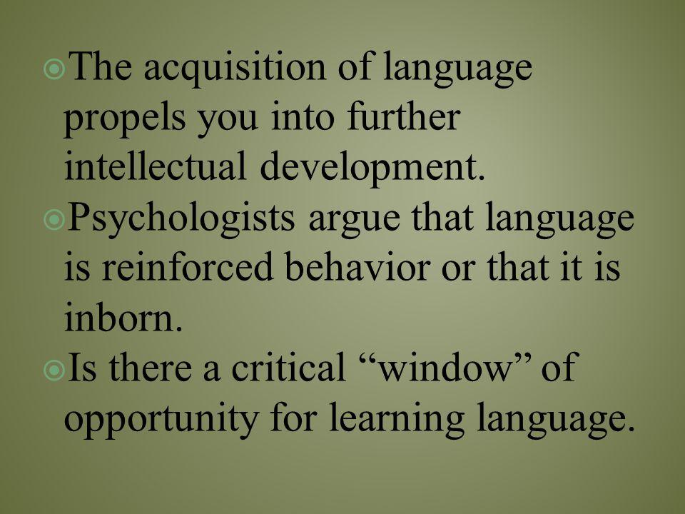  Lacks operations (reversible mental processes)  Exhibits egocentric thinking.