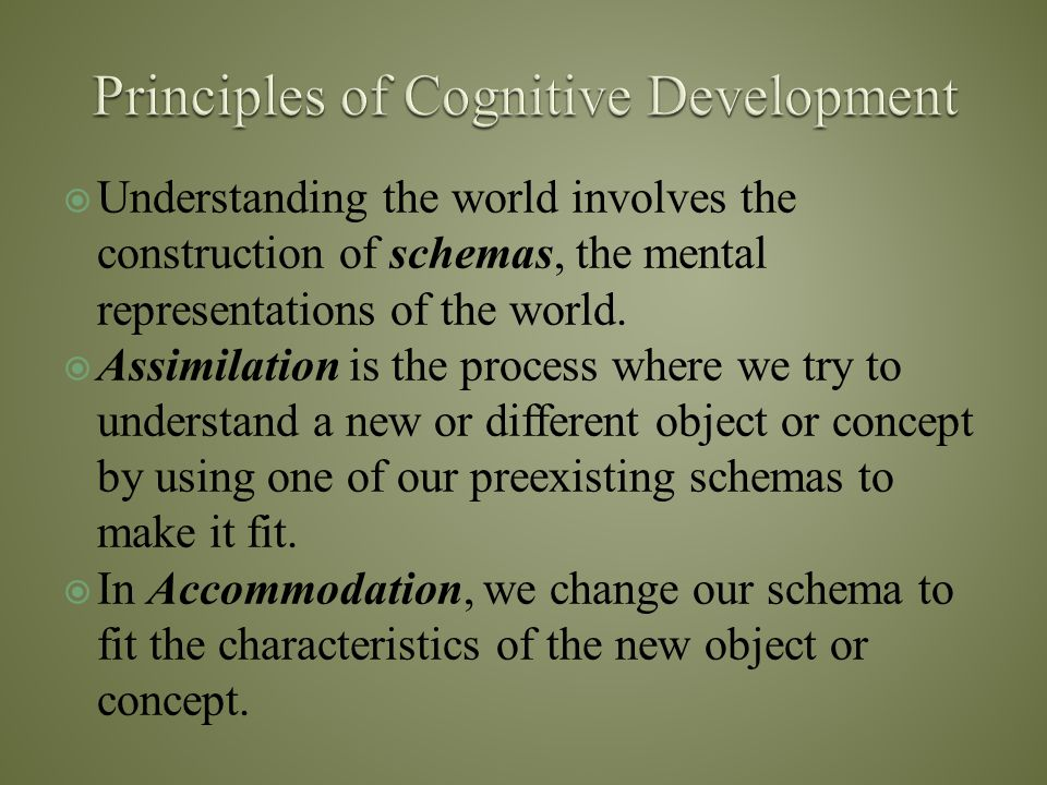  Understanding the world involves the construction of schemas, the mental representations of the world.  Assimilation is the process where we try to