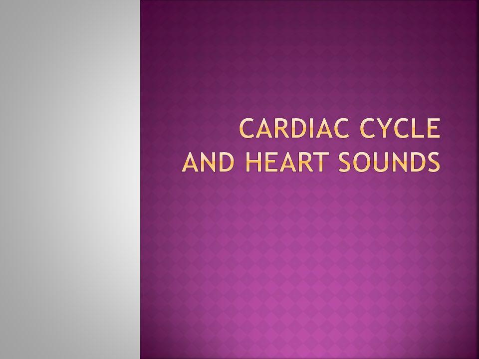  Closing of the heart valves  Described as Lubb – Dubb Basic rhythm is lubb-dubb, pause, lubb-dubb, pause, lubb-dubb, pause.