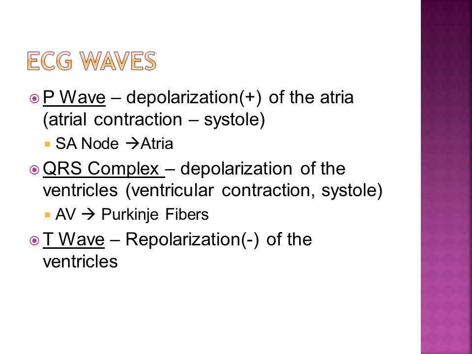 P Wave – depolarization(+) of the atria (atrial contraction – systole)  SA Node  Atria  QRS Complex – depolarization of the ventricles (ventricular contraction, systole)  AV  Purkinje Fibers  T Wave – Repolarization(-) of the ventricles