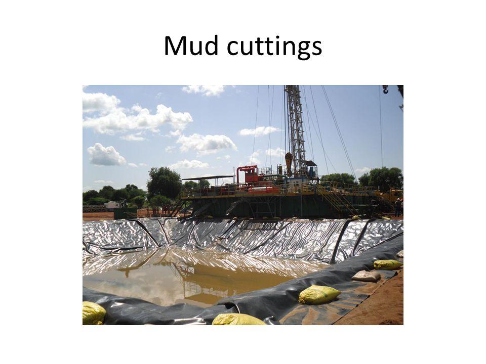 Mud cuttings