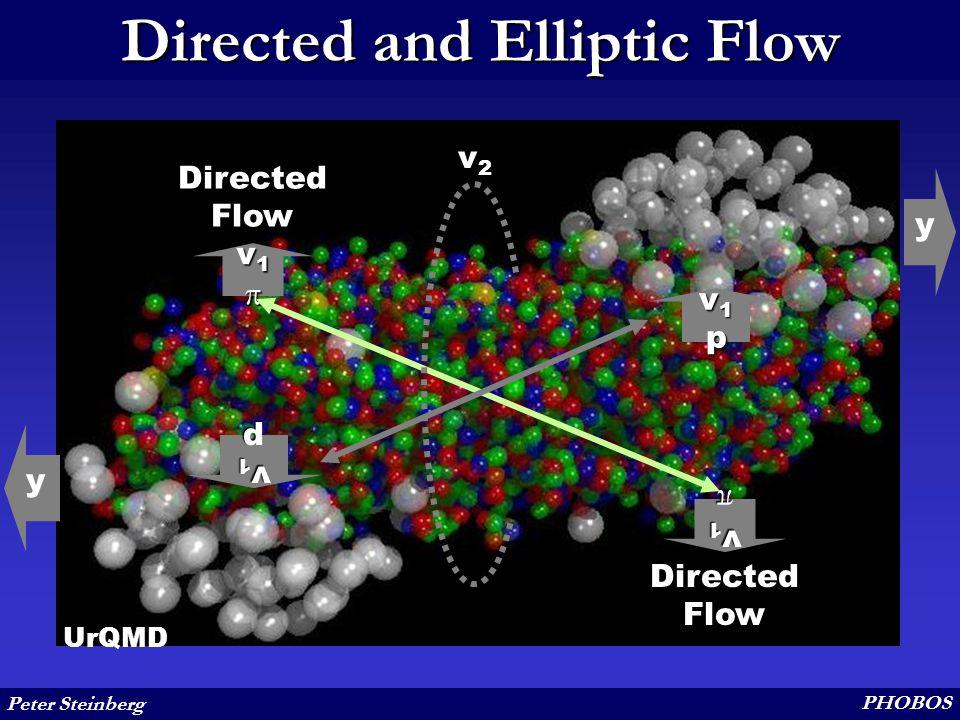 Peter Steinberg PHOBOS Directed and Elliptic Flow UrQMD Directed Flow y y v1v1v1v1 v1pv1pv1pv1p v1v1v1v1 v1pv1pv1pv1p v2v2v2v2