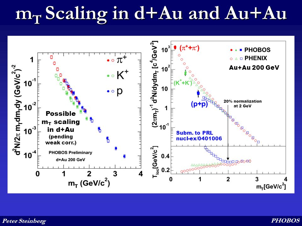 Peter Steinberg PHOBOS m T Scaling in d+Au and Au+Au Possible m T scaling in d+Au (pending weak corr.) 20% normalization at 2 GeV Subm. to PRL nucl-ex