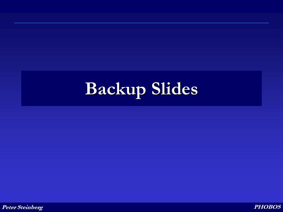 Peter Steinberg PHOBOS Backup Slides