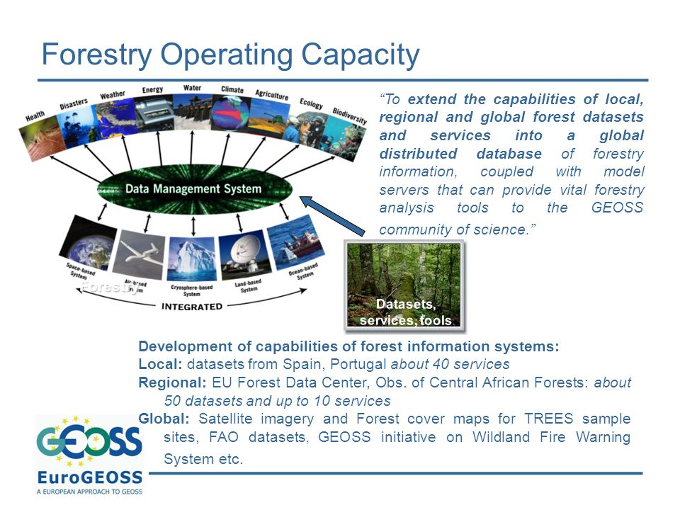 Forestry Operating Capacity Development of capabilities of forest information systems: Local: datasets from Spain, Portugal about 40 services Regional: EU Forest Data Center, Obs.
