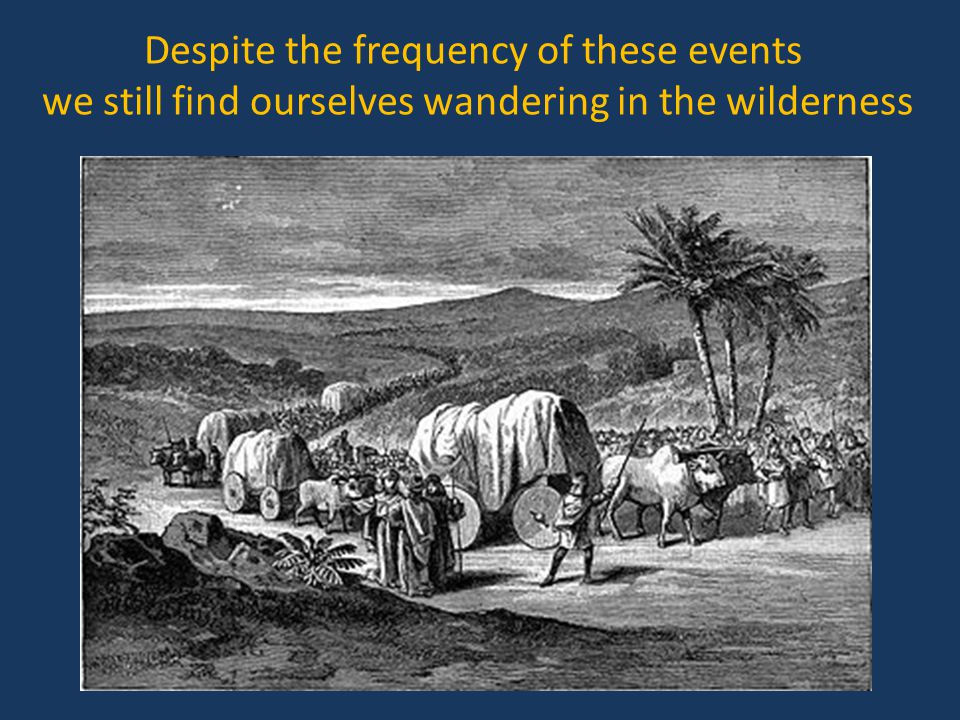 Despite the frequency of these events we still find ourselves wandering in the wilderness