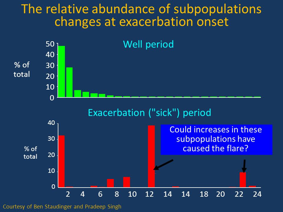 Courtesy of Ben Staudinger and Pradeep Singh The relative abundance of subpopulations changes at exacerbation onset 0 10 20 30 40 50 Well period % of total Exacerbation ( sick ) period 0 10 20 30 40 % of total 24681012141820222414 Could increases in these subpopulations have caused the flare