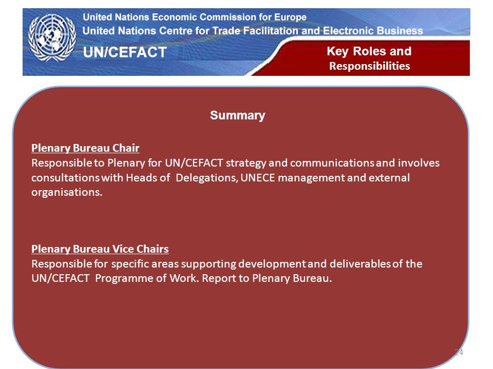 UN Economic Commission for Europe Plenary Bureau Chair Responsible to Plenary for UN/CEFACT strategy and communications and involves consultations with Heads of Delegations, UNECE management and external organisations.