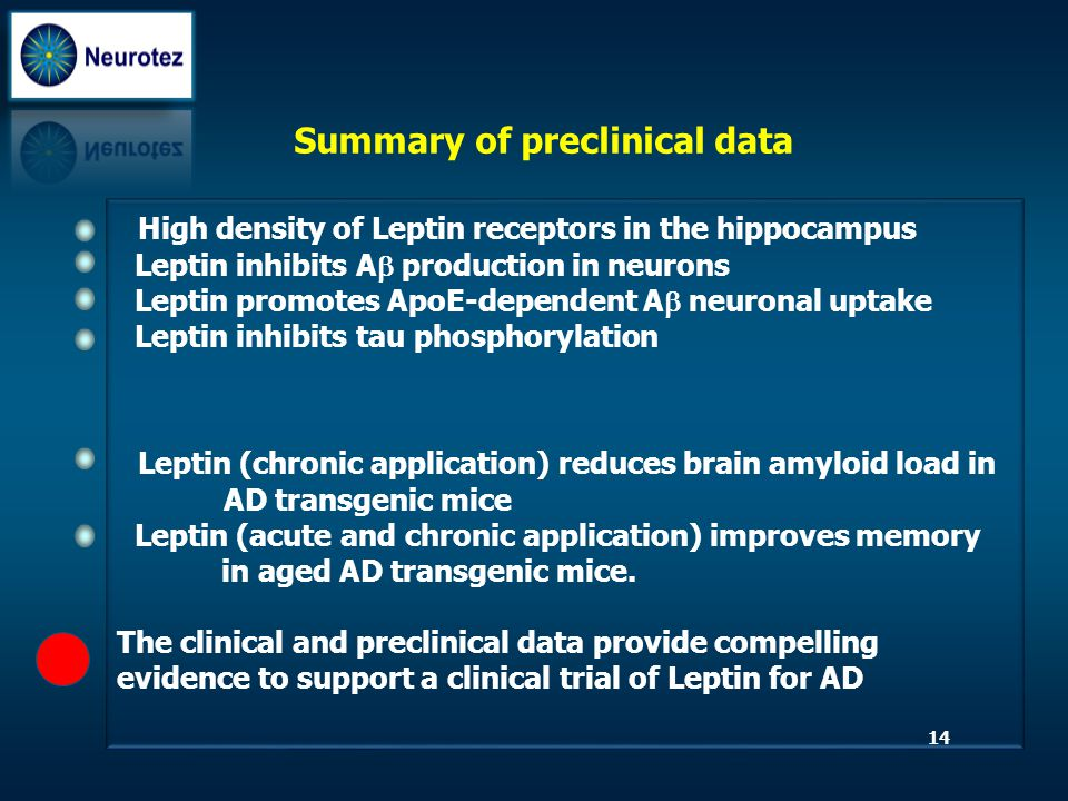 Summary of preclinical data High density of Leptin receptors in the hippocampus Leptin inhibits A  production in neurons Leptin promotes ApoE-depende