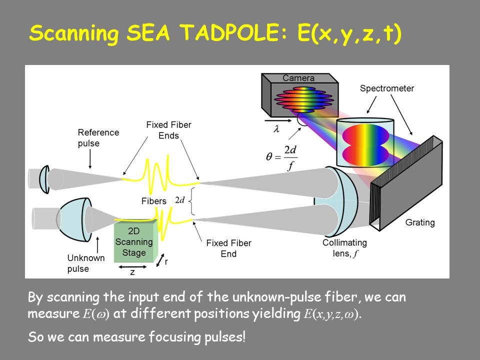 Scanning SEA TADPOLE: E(x,y,z,t) By scanning the input end of the unknown-pulse fiber, we can measure E(  ) at different positions yielding E(x,y,z,ω