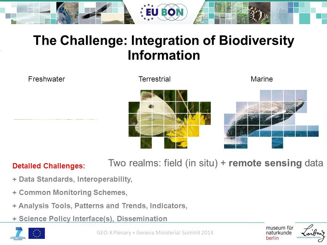 GEO-X Plenary + Geneva Ministerial Summit 2014 EU BON Workflow und Organization