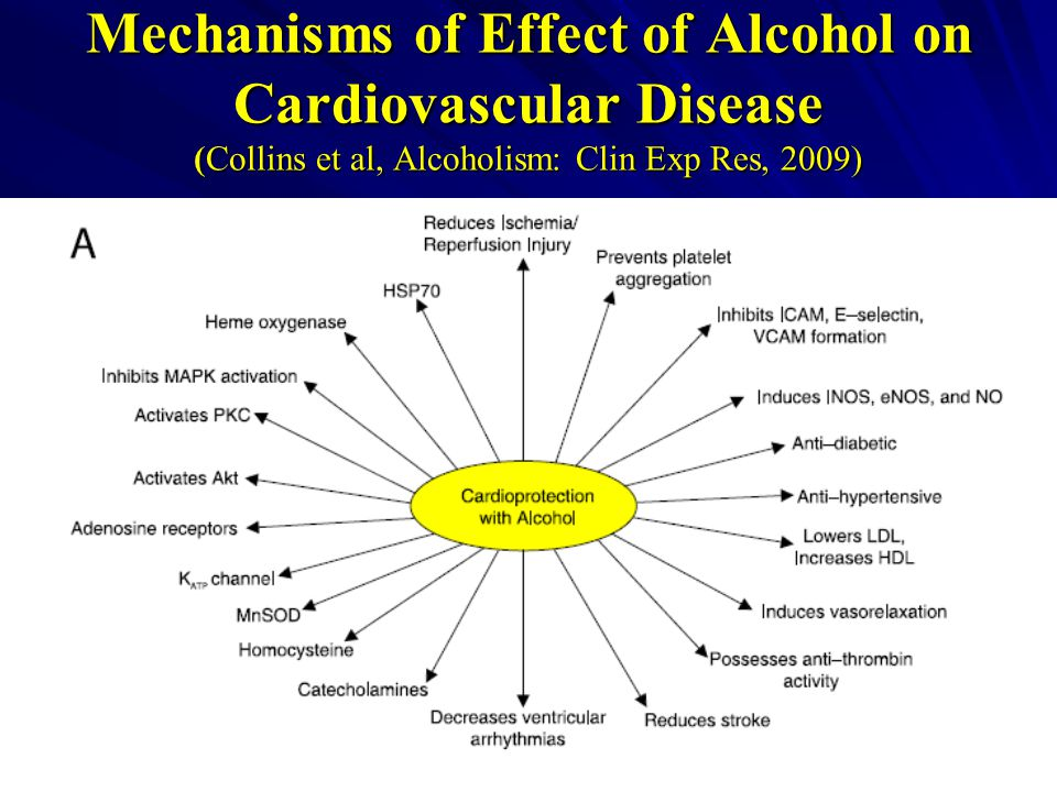 Mechanisms of Effect of Alcohol on Cardiovascular Disease (Collins et al, Alcoholism: Clin Exp Res, 2009)