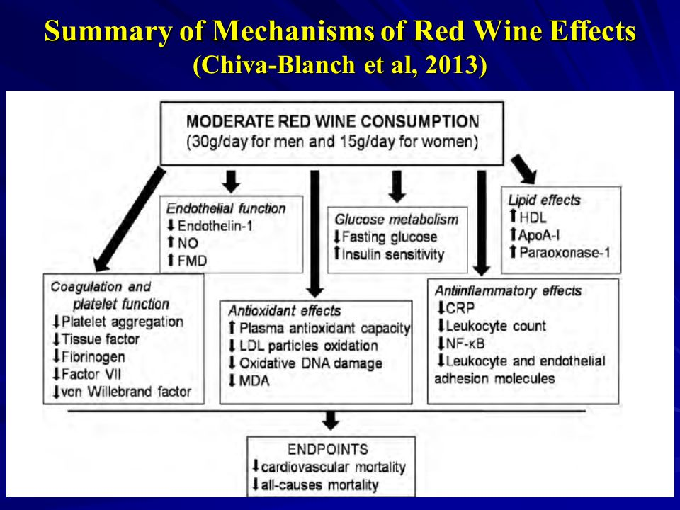 Summary of Mechanisms of Red Wine Effects (Chiva-Blanch et al, 2013)