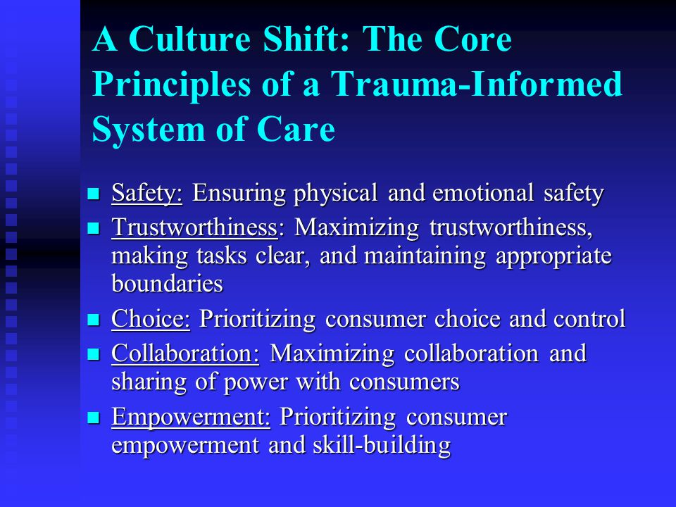 A Culture Shift: The Core Principles of a Trauma-Informed System of Care Safety: Ensuring physical and emotional safety Safety: Ensuring physical and emotional safety Trustworthiness: Maximizing trustworthiness, making tasks clear, and maintaining appropriate boundaries Trustworthiness: Maximizing trustworthiness, making tasks clear, and maintaining appropriate boundaries Choice: Prioritizing consumer choice and control Choice: Prioritizing consumer choice and control Collaboration: Maximizing collaboration and sharing of power with consumers Collaboration: Maximizing collaboration and sharing of power with consumers Empowerment: Prioritizing consumer empowerment and skill-building Empowerment: Prioritizing consumer empowerment and skill-building