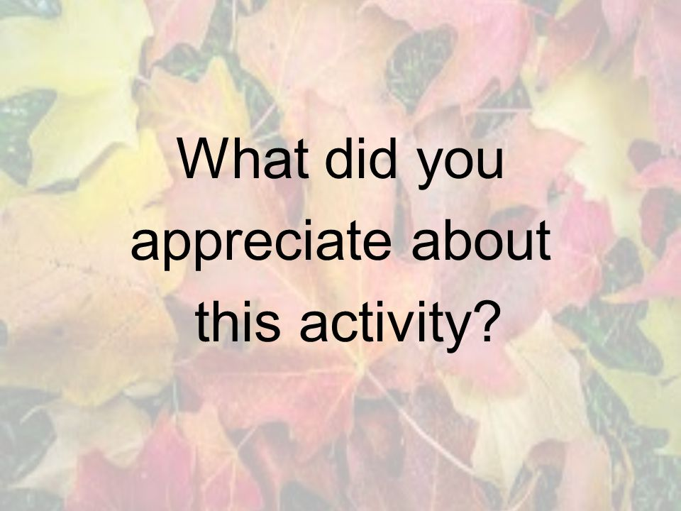 What did you appreciate about this activity?
