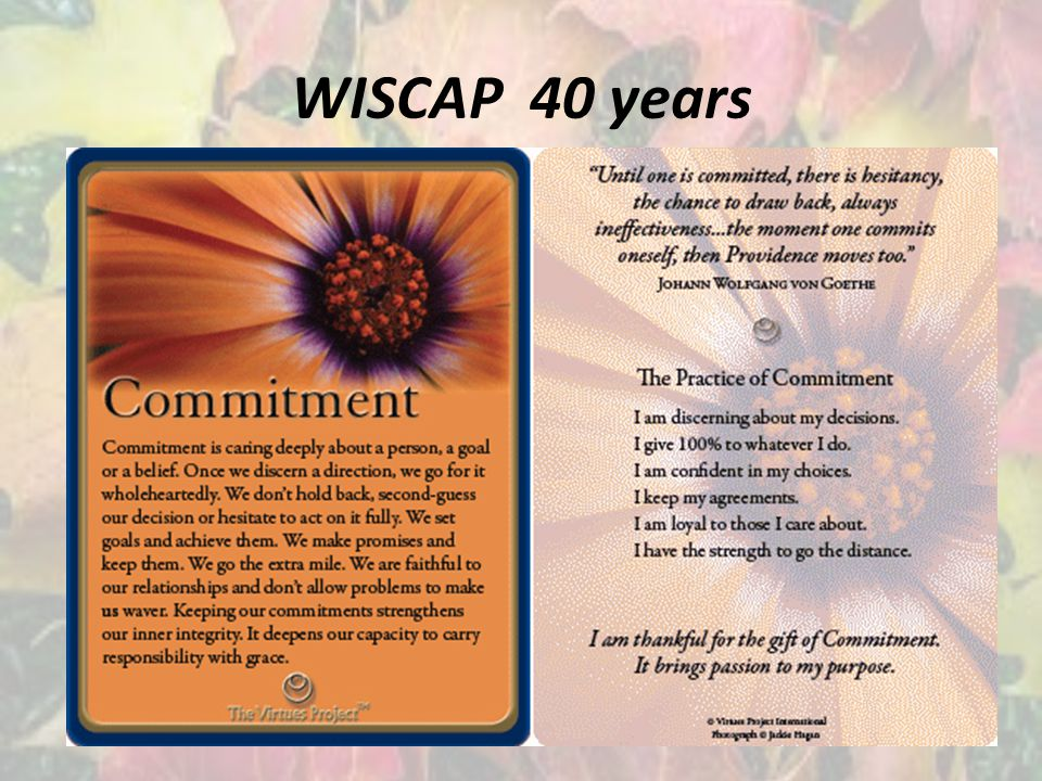 WISCAP 40 years
