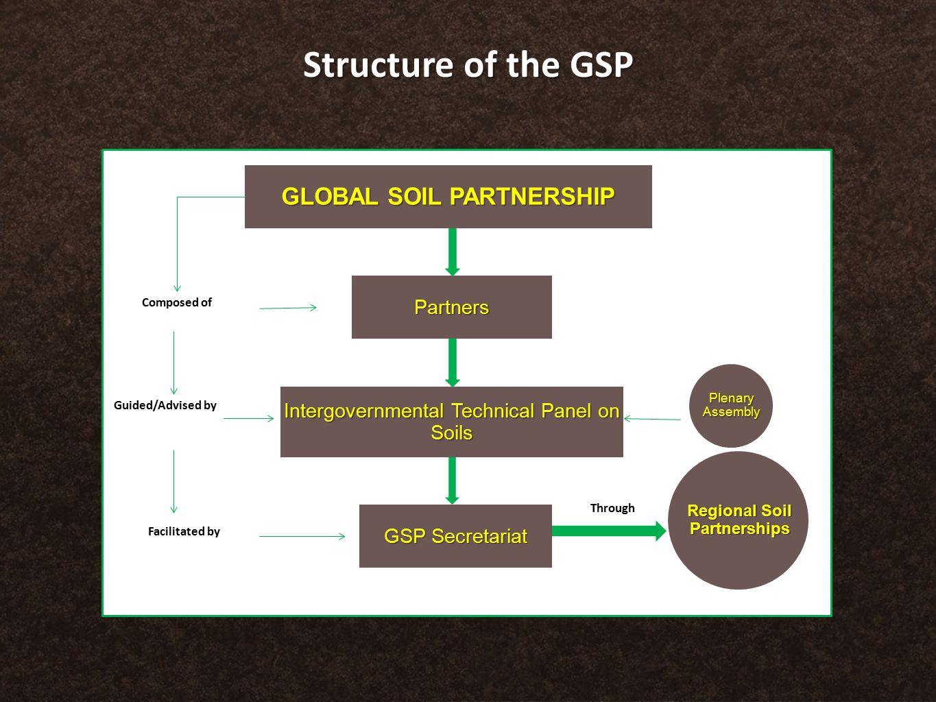 Structure of the GSP Partners GLOBAL SOIL PARTNERSHIP Intergovernmental Technical Panel on Soils GSP Secretariat Composed of Guided/Advised by Facilitated by Through Regional Soil Partnerships Plenary Assembly