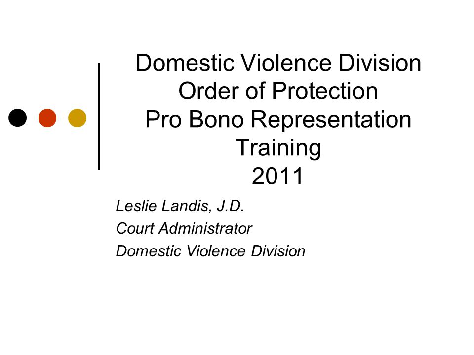 Domestic Violence Division Order of Protection Pro Bono Representation Training 2011 Leslie Landis, J.D. Court Administrator Domestic Violence Divisio