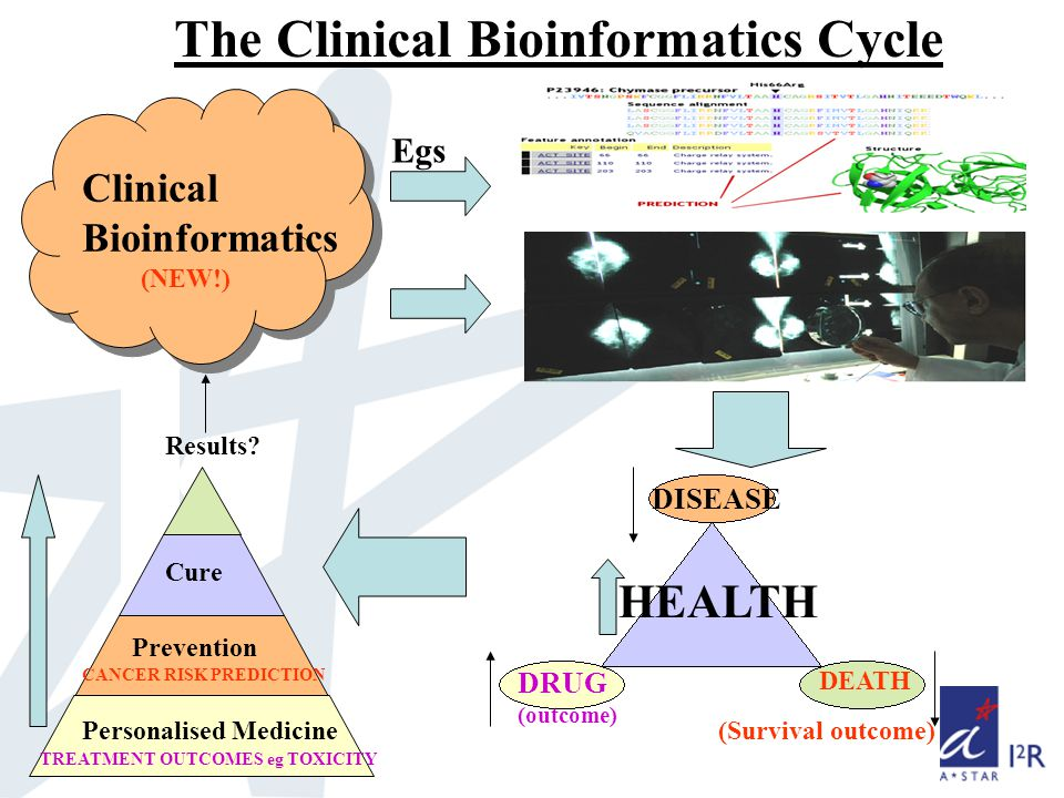 The Clinical Bioinformatics Cycle Personalised Medicine Prevention Cure Results.