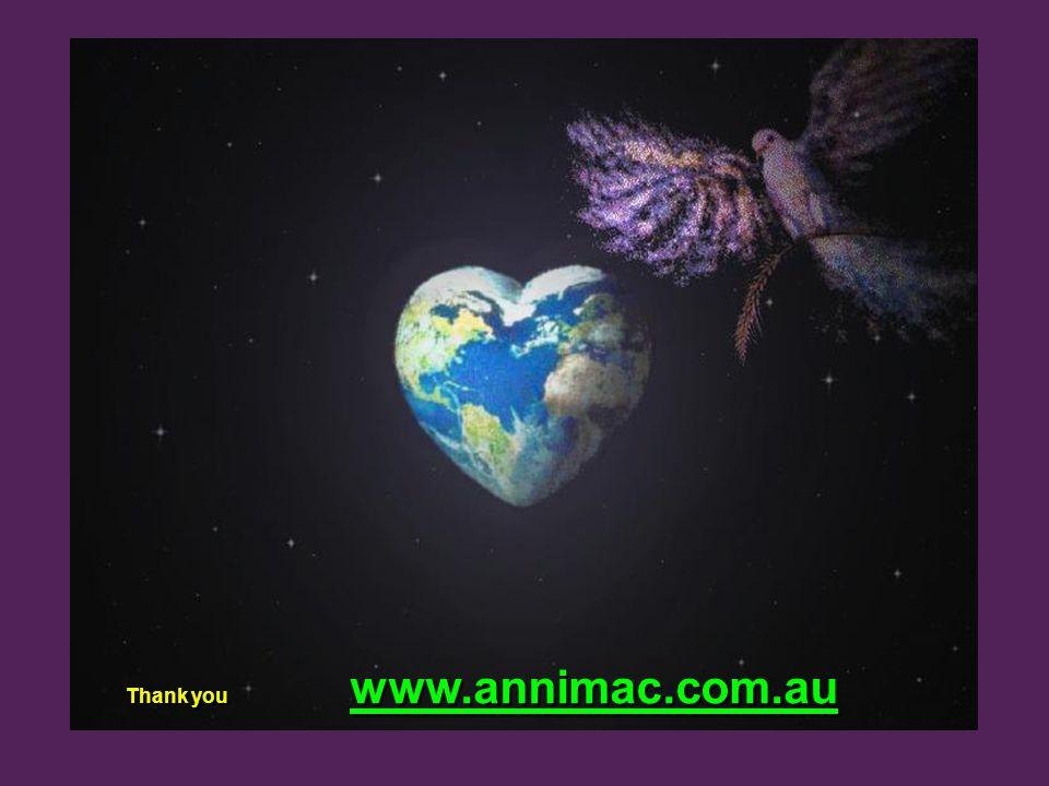 Thank you www.annimac.com.au Thank you www.annimac.com.au www.annimac.com.au