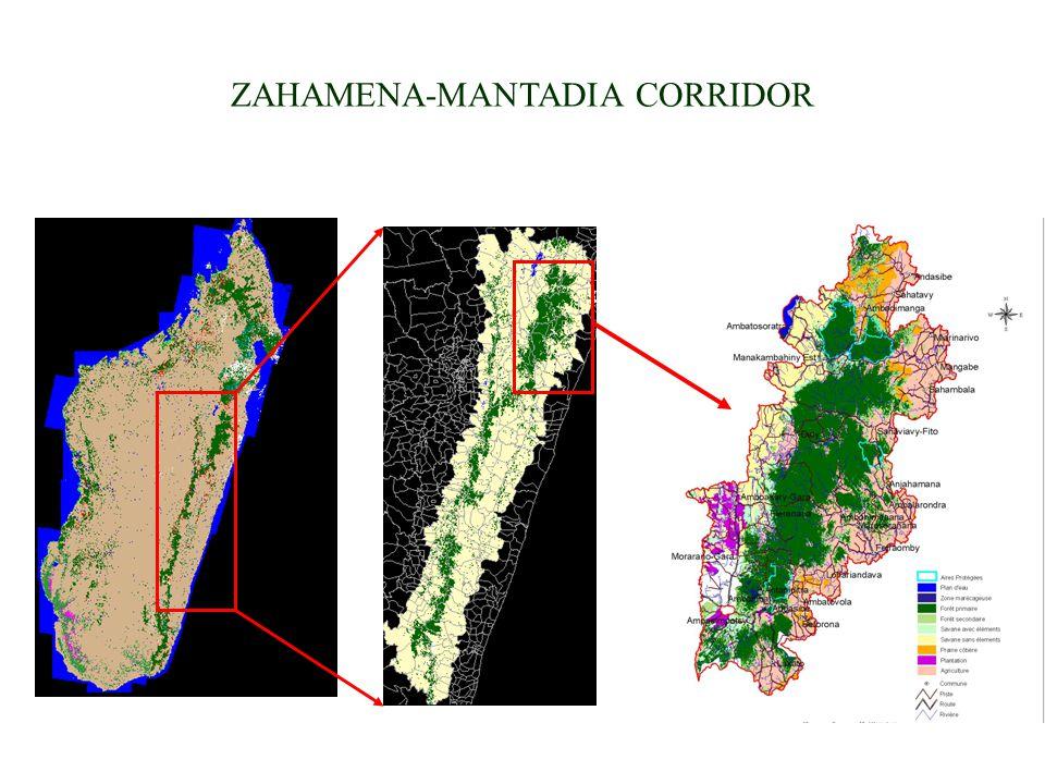 ZAHAMENA-MANTADIA CORRIDOR