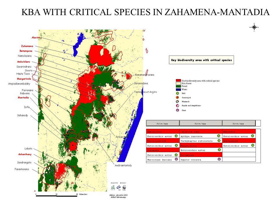 KBA WITH CRITICAL SPECIES IN ZAHAMENA-MANTADIA