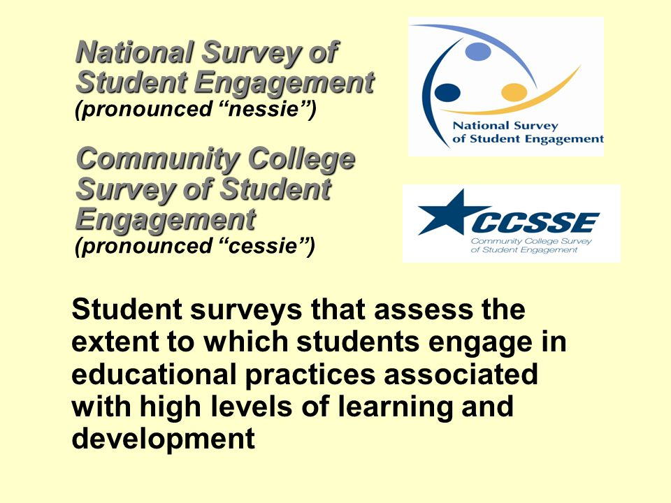"National Survey of Student Engagement Community College Survey of Student Engagement National Survey of Student Engagement (pronounced ""nessie"") Commu"