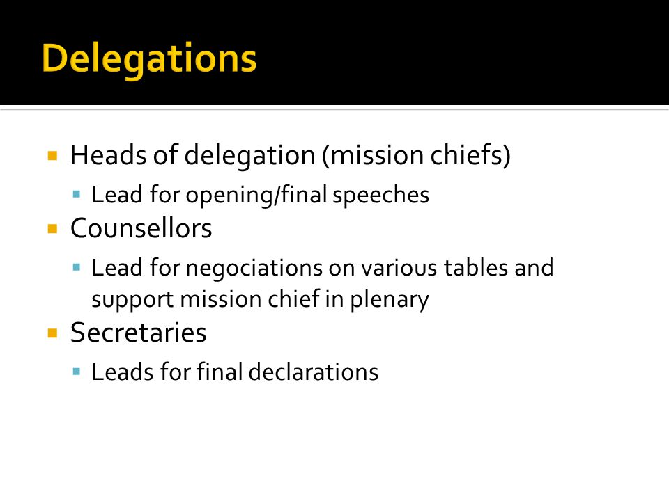  Heads of delegation (mission chiefs)  Lead for opening/final speeches  Counsellors  Lead for negociations on various tables and support mission chief in plenary  Secretaries  Leads for final declarations
