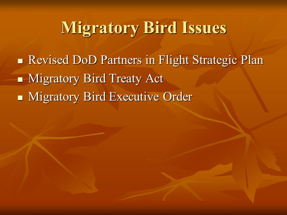 Migratory Bird Issues Revised DoD Partners in Flight Strategic Plan Revised DoD Partners in Flight Strategic Plan Migratory Bird Treaty Act Migratory Bird Treaty Act Migratory Bird Executive Order Migratory Bird Executive Order