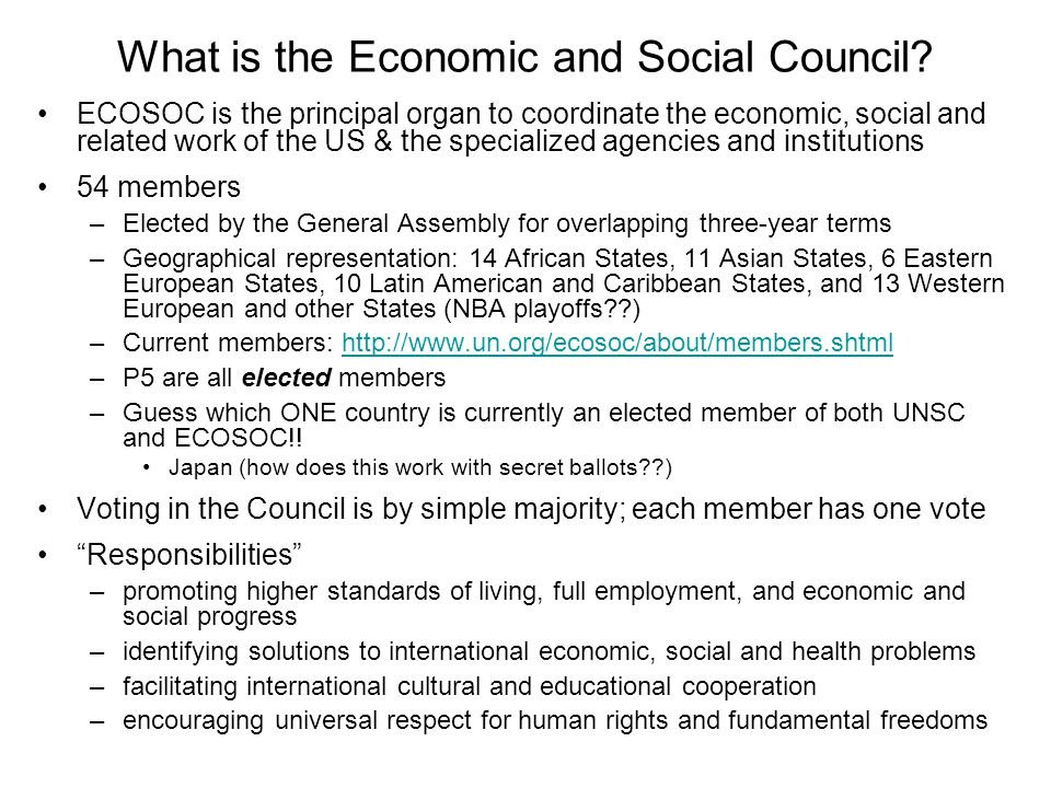 What is the Economic and Social Council.