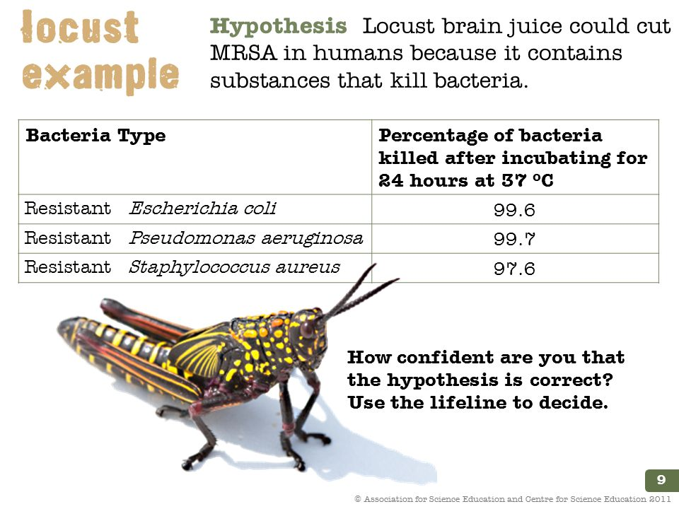 9 © Association for Science Education and Centre for Science Education 2011 Bacteria TypePercentage of bacteria killed after incubating for 24 hours at 37 ºC Resistant Escherichia coli 99.6 Resistant Pseudomonas aeruginosa 99.7 Resistant Staphylococcus aureus 97.6 Hypothesis Locust brain juice could cut MRSA in humans because it contains substances that kill bacteria.