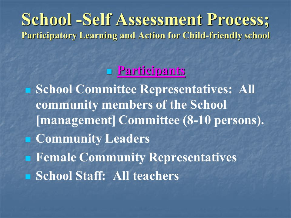 School -Self Assessment Process; Participatory Learning and Action for Child-friendly school General Methods Applied in the Process General Methods Applied in the Process All activities used experiential learning techniques – learning by doing Participants worked in groups of 6-8 persons to maximize cooperative learning Pupils worked with other pupils; no segregation of sexes