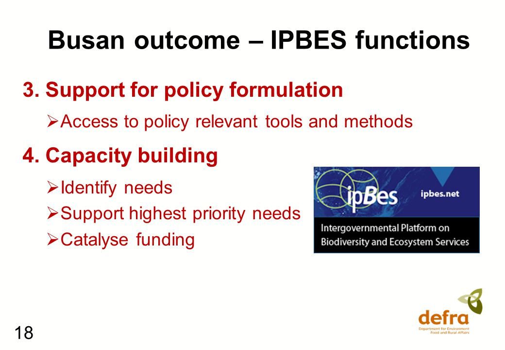 18 Busan outcome – IPBES functions 3. Support for policy formulation  Access to policy relevant tools and methods 4. Capacity building  Identify nee