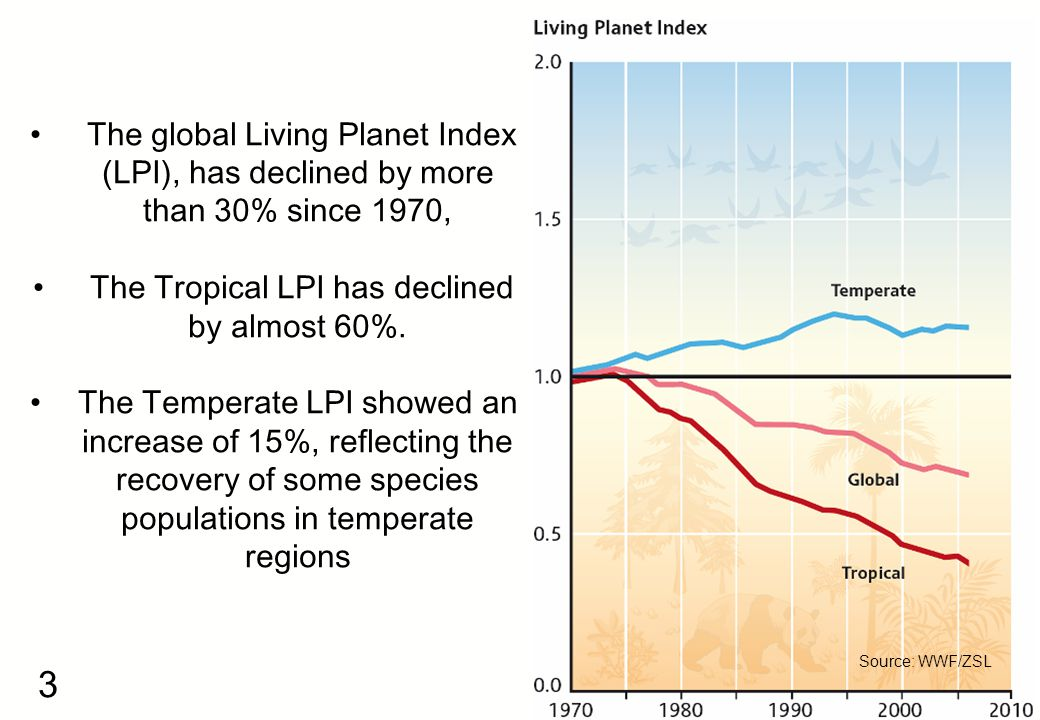 3 Source: WWF/ZSL The global Living Planet Index (LPI), has declined by more than 30% since 1970, The Tropical LPI has declined by almost 60%.