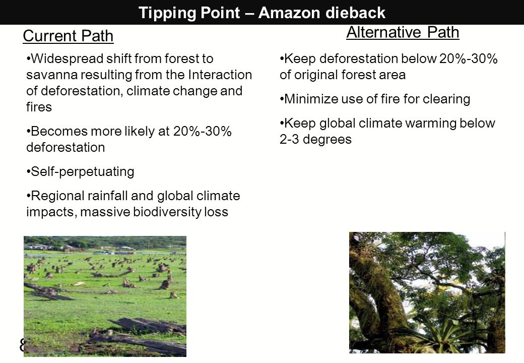 8 Tipping Point – Amazon dieback Widespread shift from forest to savanna resulting from the Interaction of deforestation, climate change and fires Bec