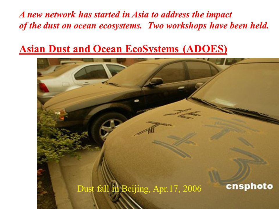 Dust fall in Beijing, Apr.17, 2006 A new network has started in Asia to address the impact of the dust on ocean ecosystems.