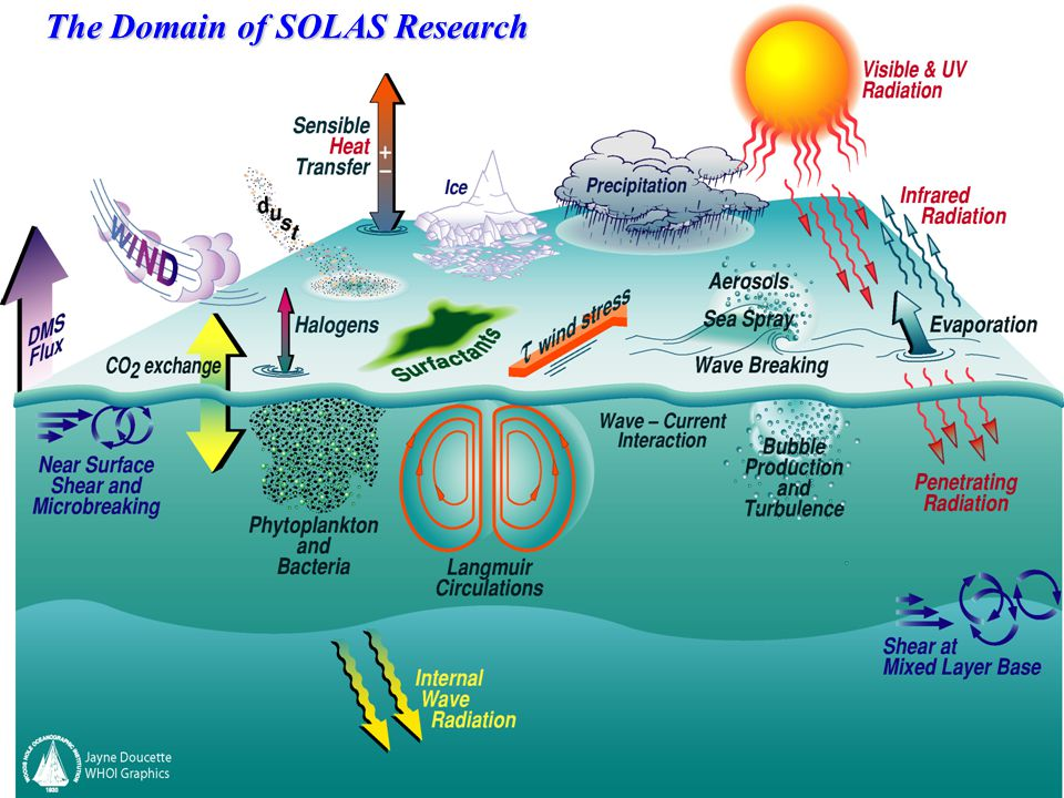 SOLAS has 3 Main Focus Areas: Focus 1: Biogeochemical Interactions and Feedbacks Between Ocean and Atmosphere Chairs: Bill Miller (USA) & Mitsuo Uematsu (Japan)Bill Miller Mitsuo Uematsu Focus 2: Exchange Processes at the Air-Sea Interface and the Role of Transport and Transformation in the Atmospheric and Oceanic Boundary Layers Chair: Wade McGillis (USA)Wade McGillis Focus 3: Air-Sea Flux of CO 2 and Other Long-Lived Radiatively-Active Gases Chairs:Truls Johannessen (Norway) & Arne Koertzinger (Germany)Truls Johannessen This activity is developed jointly with IMBER and includes 3 sub-groups: WG1-Surface Ocean Systems WG2-Interior Ocean WG3-Sensitivity: (future oceans)
