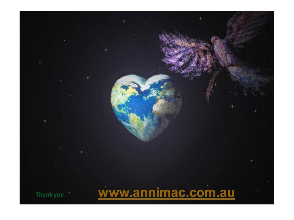 Thank you www.annimac.com.au www.annimac.com.au