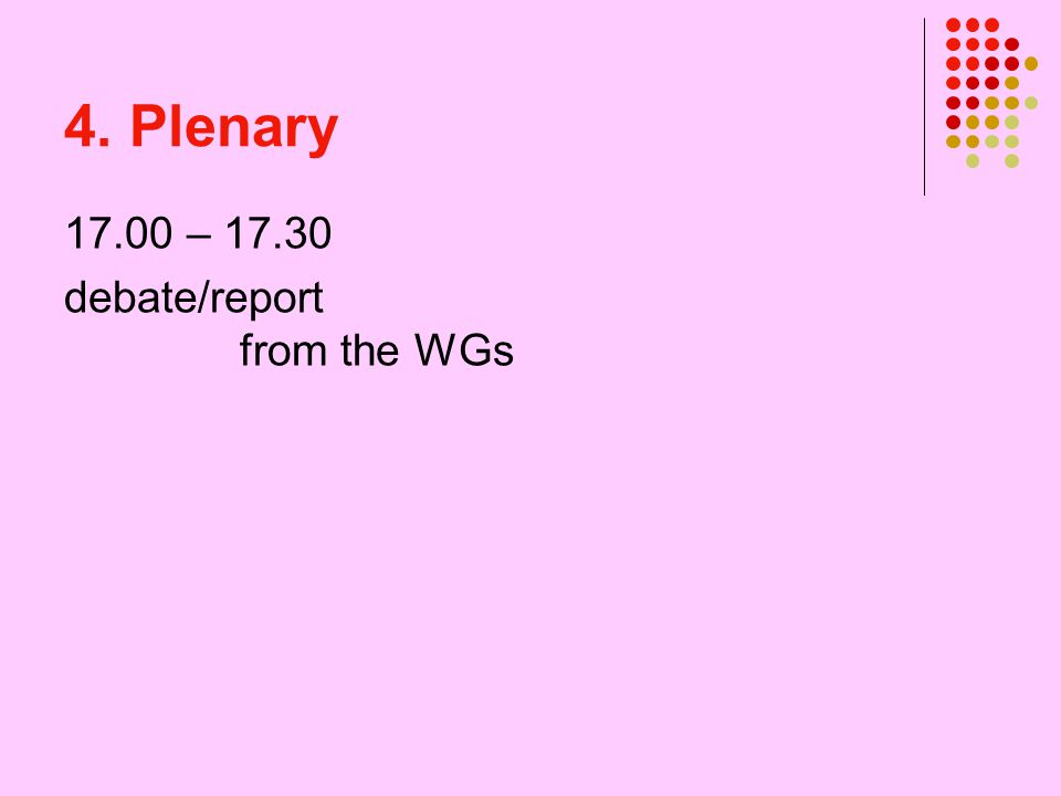 4. Plenary 17.00 – 17.30 debate/report from the WGs