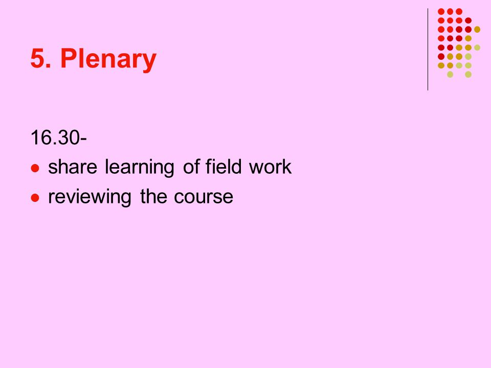 5. Plenary 16.30- share learning of field work reviewing the course