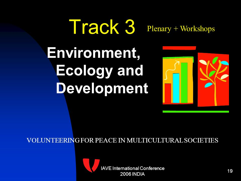 IAVE International Conference 2006 INDIA 19 Track 3 Environment, Ecology and Development VOLUNTEERING FOR PEACE IN MULTICULTURAL SOCIETIES Plenary + Workshops