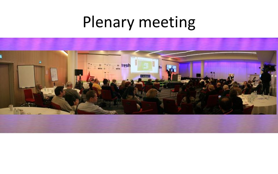 Plenary meeting