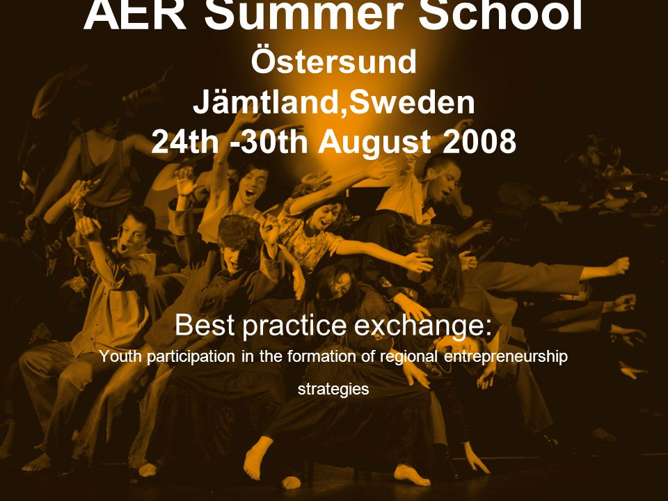 AER Summer School Östersund Jämtland,Sweden 24th -30th August 2008 Best practice exchange: Youth participation in the formation of regional entrepreneurship strategies
