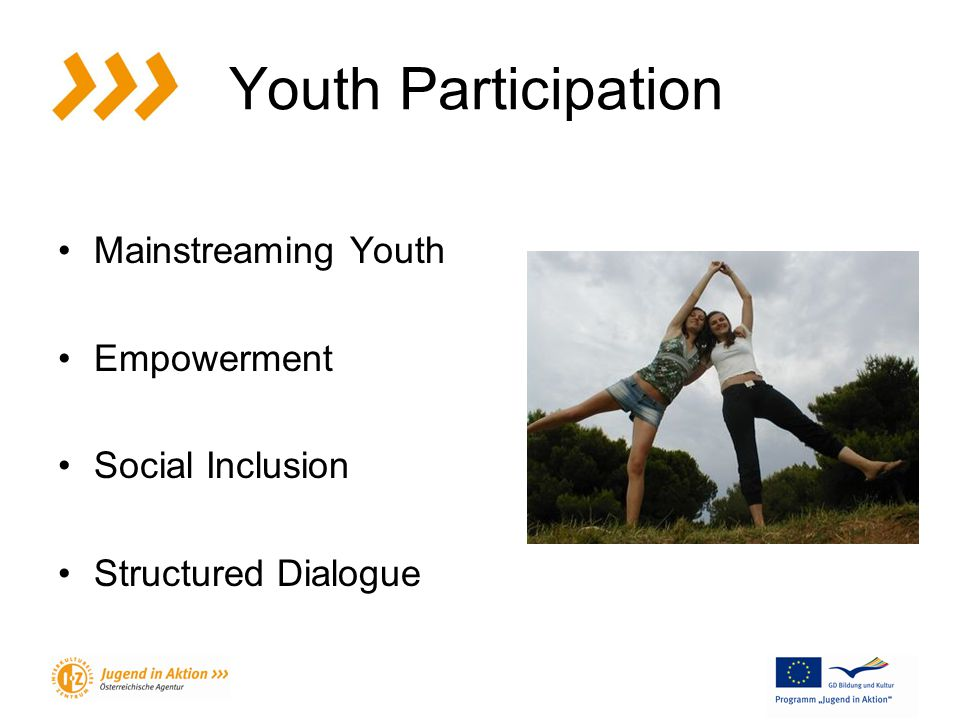 Youth Participation Mainstreaming Youth Empowerment Social Inclusion Structured Dialogue