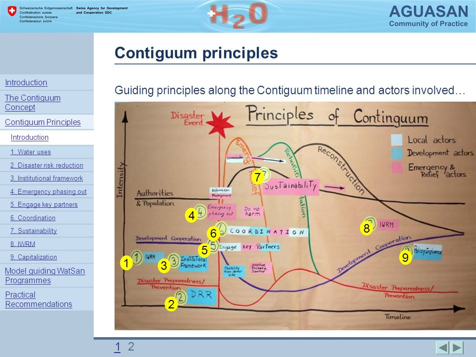 Contiguum principles Guiding principles along the Contiguum timeline and actors involved….