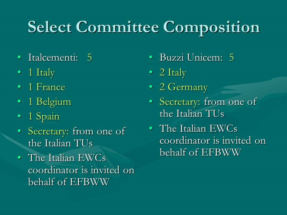 Select Committee Composition Italcementi: 5Italcementi: 5 1 Italy1 Italy 1 France1 France 1 Belgium1 Belgium 1 Spain1 Spain Secretary: from one of the