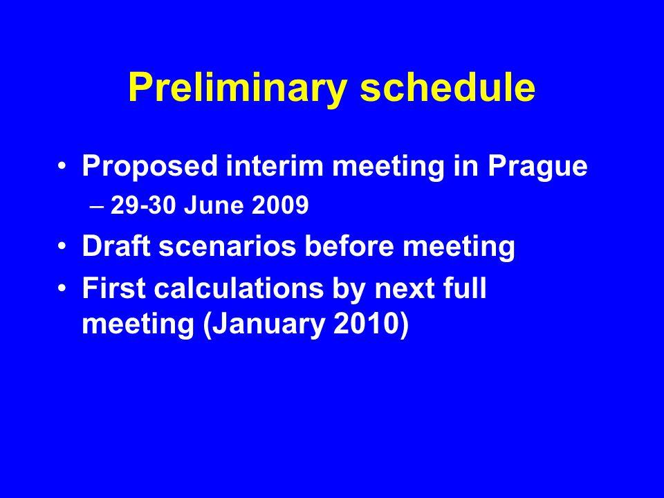Preliminary schedule Proposed interim meeting in Prague –29-30 June 2009 Draft scenarios before meeting First calculations by next full meeting (Janua