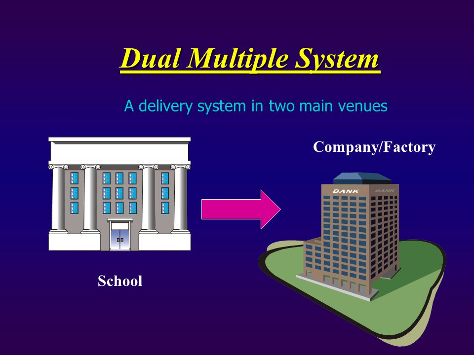 Dual Multiple System School Company/Factory A delivery system in two main venues