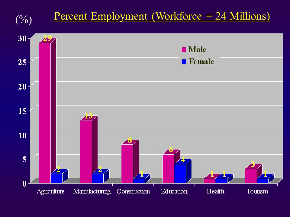(%) Percent Employment (Workforce = 24 Millions)