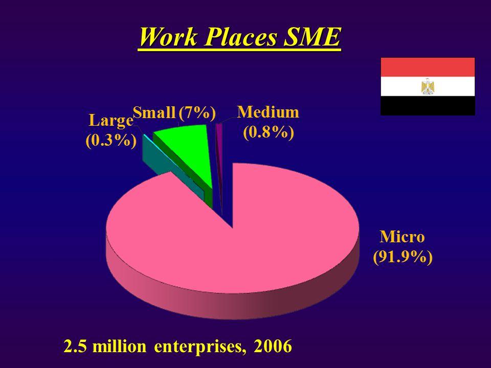Work Places SME 2.5 million enterprises, 2006